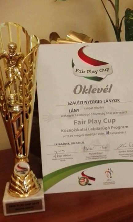 Fair Play Cup megyei döntő